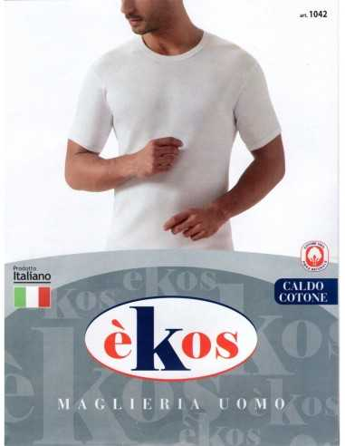 èKos - ART. 1042
